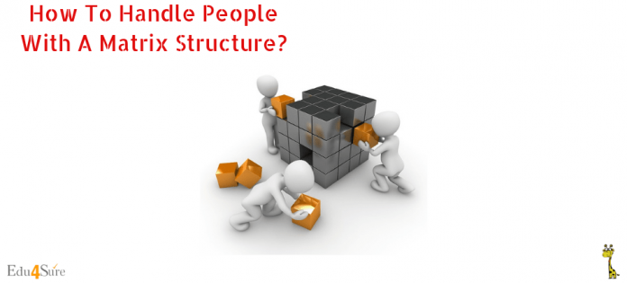 How-Handle-People-using-Matrix-Structure