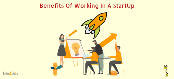 Benefits-working-startup